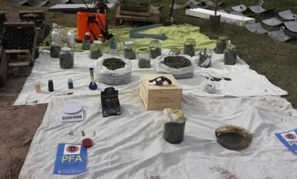Allanan un vivero donde se cultivaba marihuana en Pilar